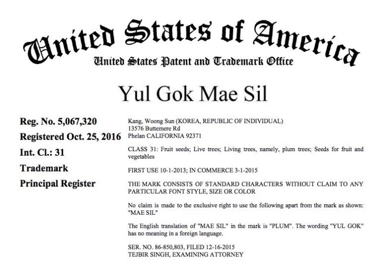 yulgokmae-trademark