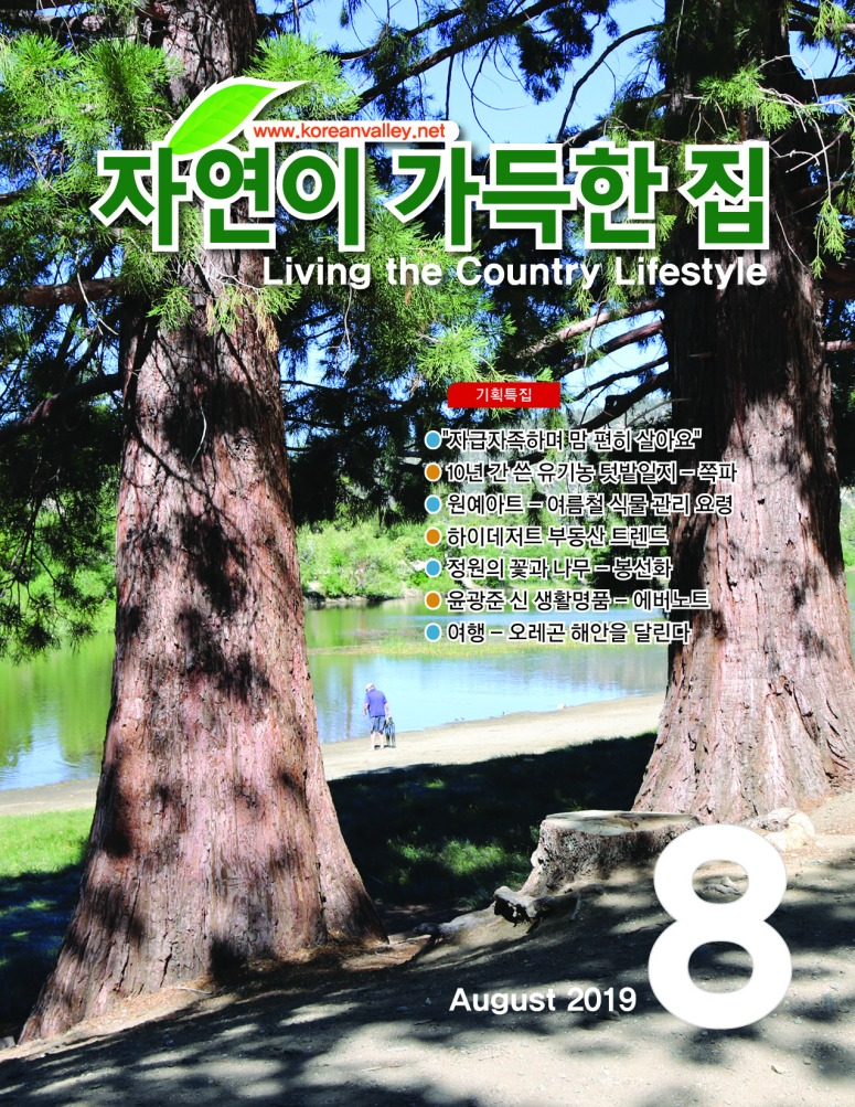 Cover(Aug19) (1)