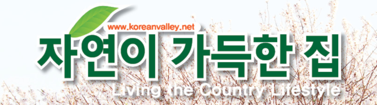 koreanvalley-cover-title